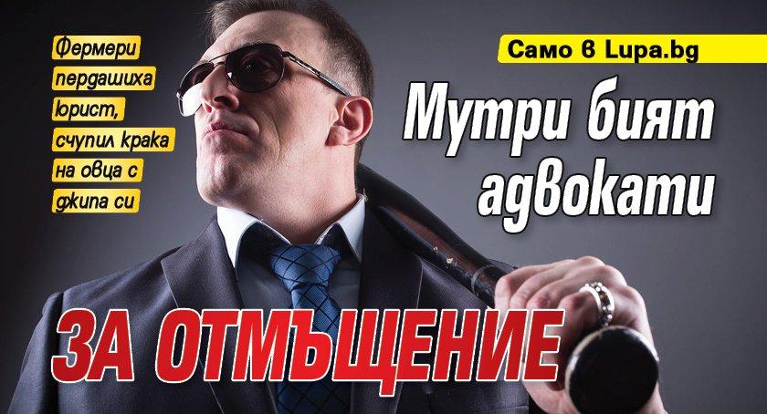 Само в Lupa.bg: Мутри бият адвокати за отмъщение