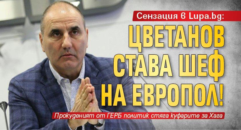 Сензация в Lupa.bg: Цветанов става шеф на Европол!