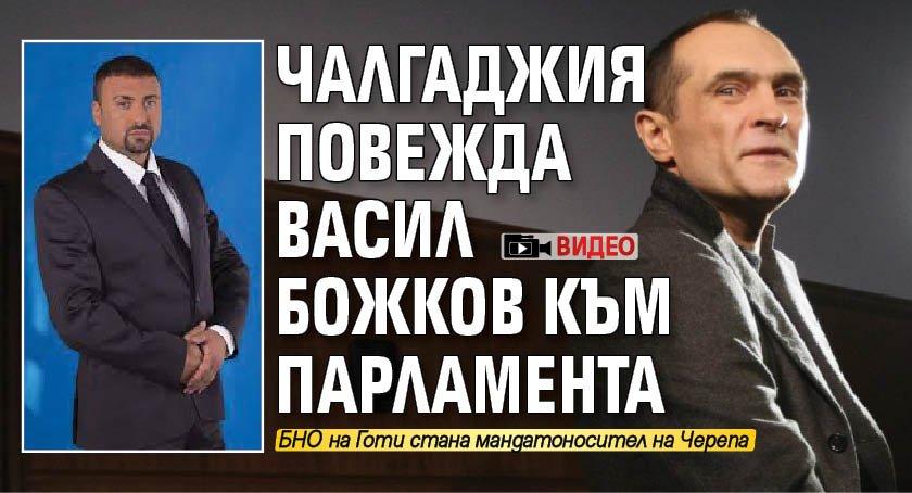 Чалгаджия повежда Васил Божков към парламента (ВИДЕО)