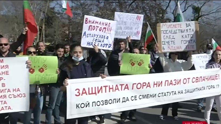 Пореден протест във Варна срещу изсичането на гората