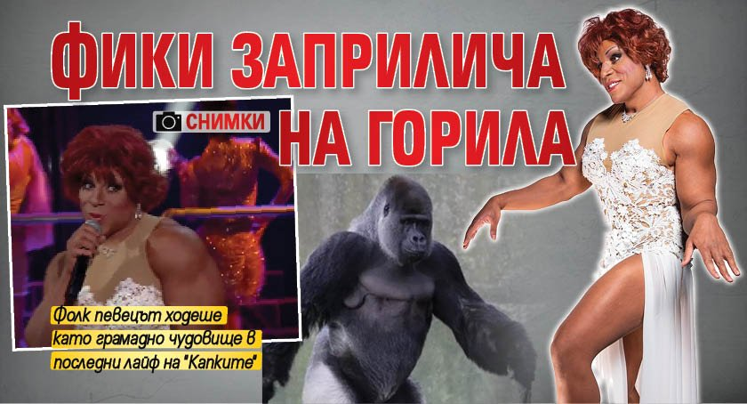 Фики заприлича на горила (Снимки)