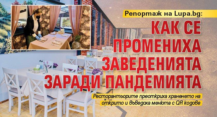Репортаж на Lupa.bg: Как се промениха заведенията заради пандемията
