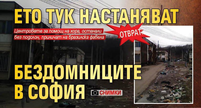 Отврат: Ето тук настаняват бездомниците в София (СНИМКИ)