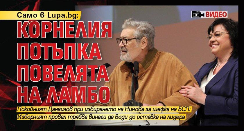 Само в Lupa.bg: Корнелия потъпка повелята на Ламбо (ВИДЕО)