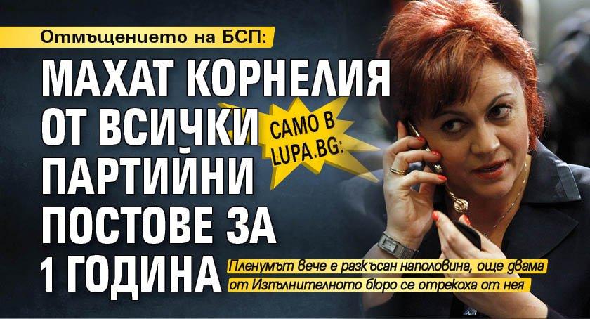 Само в Lupa.bg: Отмъщението на БСП: Махат Корнелия от всички партийни постове за 1 година