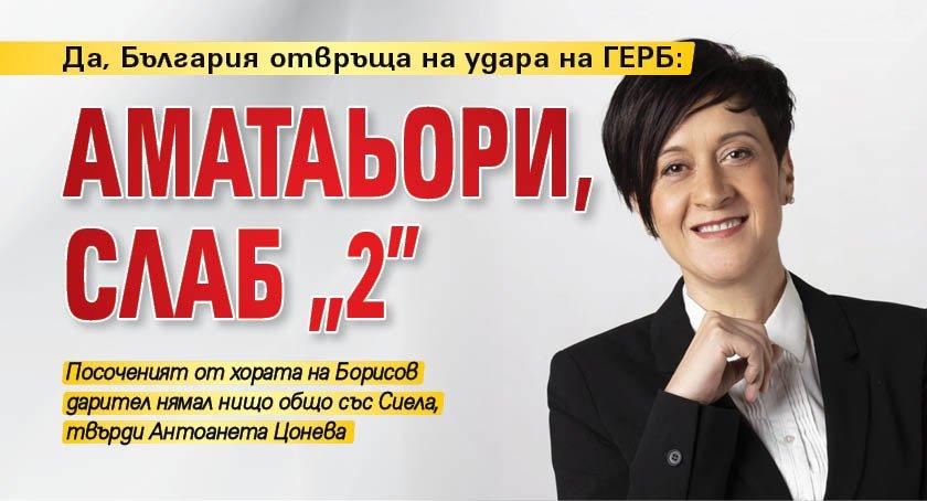 """Да, България отвръща на удара на ГЕРБ: Аматаьори, слаб """"2"""""""
