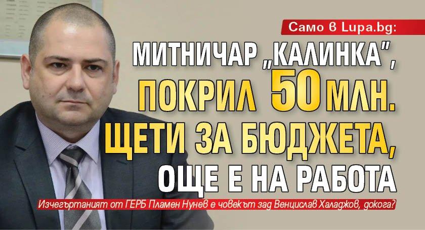 """Само в Lupa.bg: Митничар """"калинка"""", покрил 50 млн. щети за бюджета, още е на работа"""