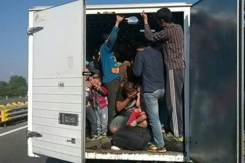 Спипаха наши каналджии в Румъния да прекарват афганистанци