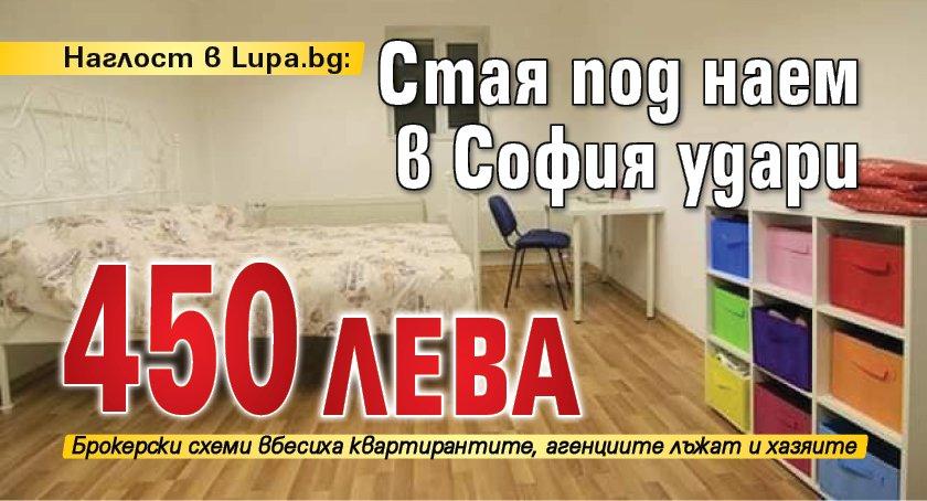 Наглост в Lupa.bg: Стая под наем в София удари 450 лева