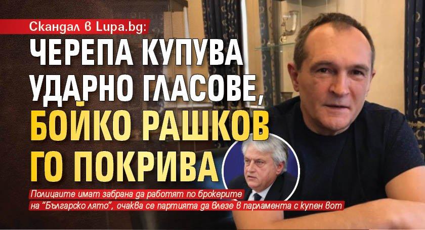 Скандал в Lupa.bg: Черепа купува ударно гласове, Бойко Рашков го покрива