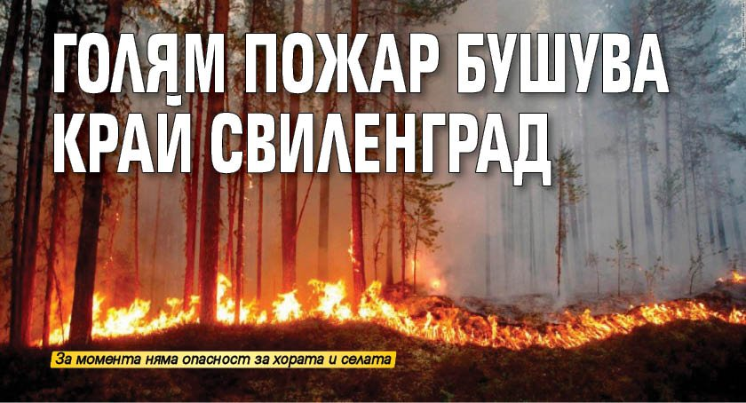 Голям пожар бушува край Свиленград