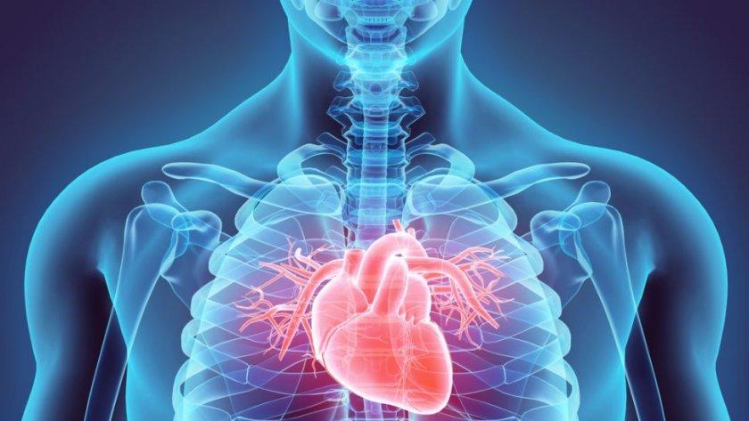 Учени: COVID-19 води до увреждане на органи