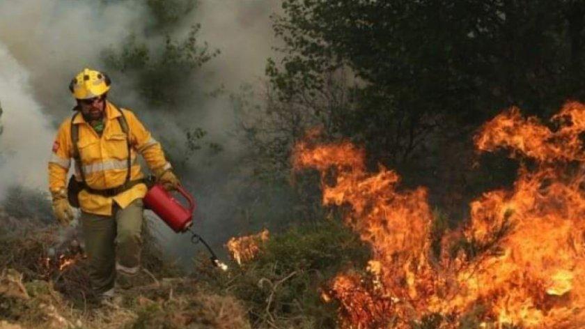 Спрян е горският пожар в Сакар планина