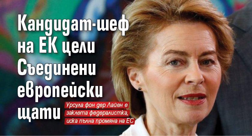 Кандидат-шеф на ЕК цели Съединени европейски щати