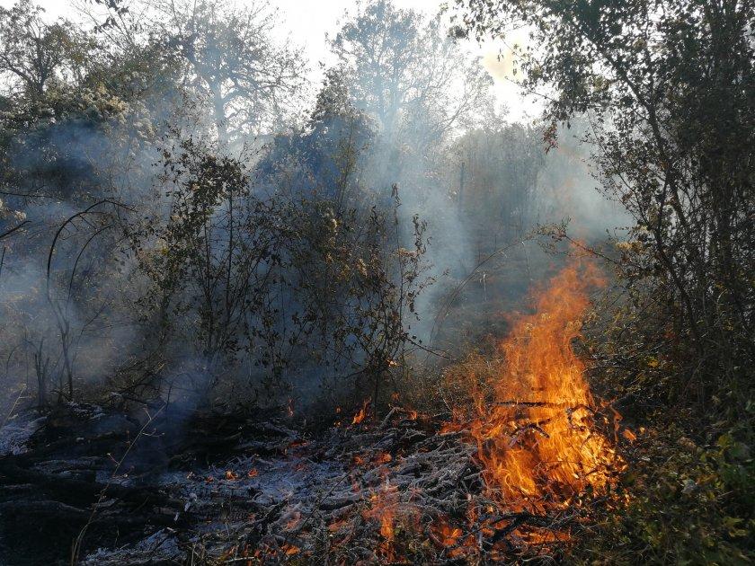 Загасиха огромен пожар край пловдивско село