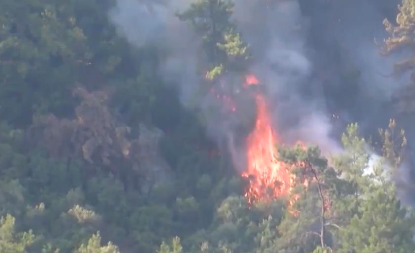 Почти всички пожари в Турция са овладени