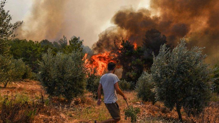 Турция гори, Ердоган обяви бедствено положение