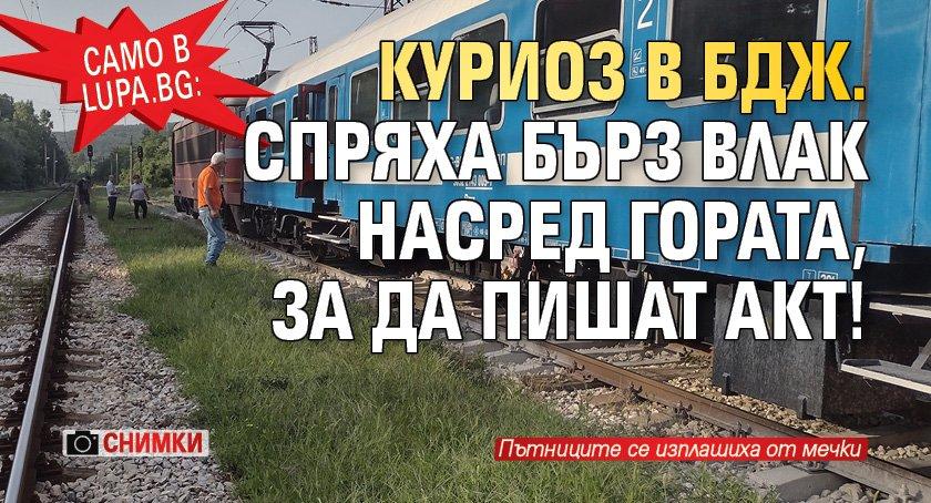 Само в Lupa.bg: Куриоз в БДЖ. Спряха бърз влак насред гората, за да пишат акт! (СНИМКИ)