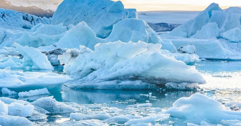 Арктика преди е била зелена