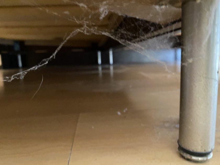 Шок в Lupa.bg: Зловеща мизерия в хотел на първа линия (СНИМКИ)