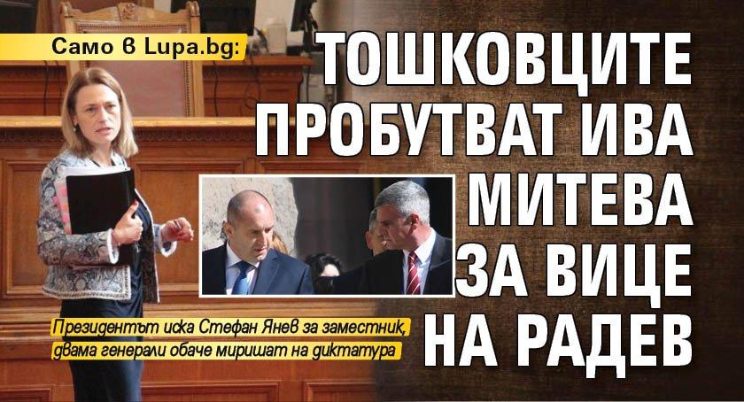 Само в Lupa.bg: Тошковците пробутват Ива Митева за вице на Радев