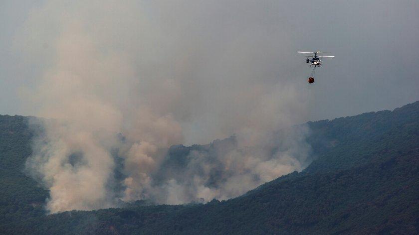 Овладяха опустошителния пожар, който бушува в Южна Испания
