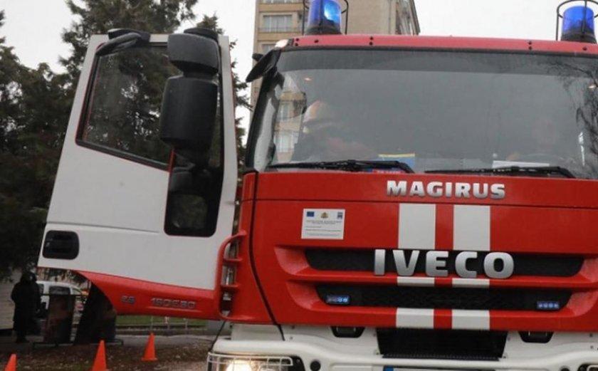 "Пожар унищожи 95% от растителността на блатото ""Кайкуша"""