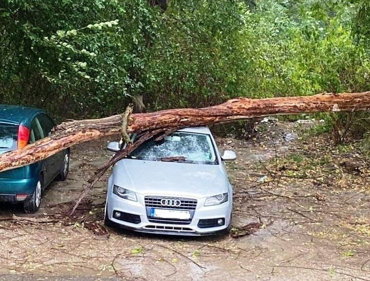 Заради бурята в Ловеч: Десетки коли са потрошени