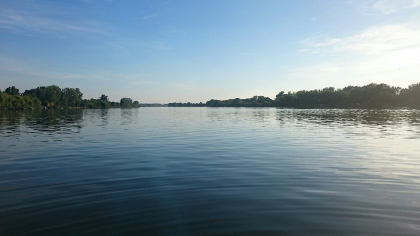 Дунав падна до критични нива