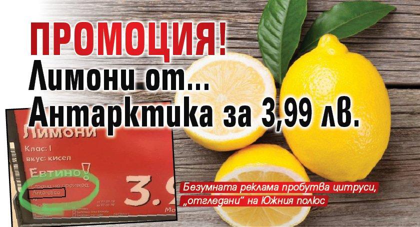 Промоция! Лимони от.... Антарктика за 3,99 лв.