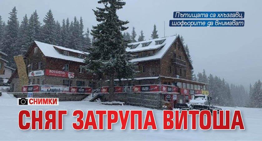 Сняг затрупа Витоша (СНИМКИ)