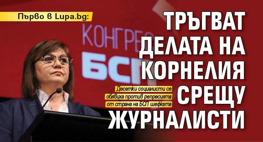 Първо в Lupa.bg: Тръгват делата на Корнелия срещу журналисти