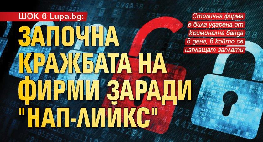 """ШОК в Lupa.bg: Започна кражбата на фирми заради """"НАП-лийкс"""""""