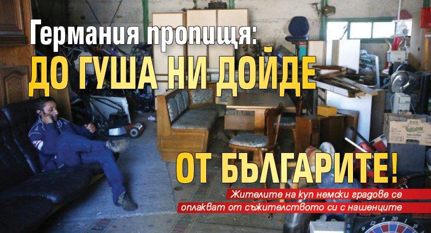 Германия пропищя: До гуша ни дойде от българите!