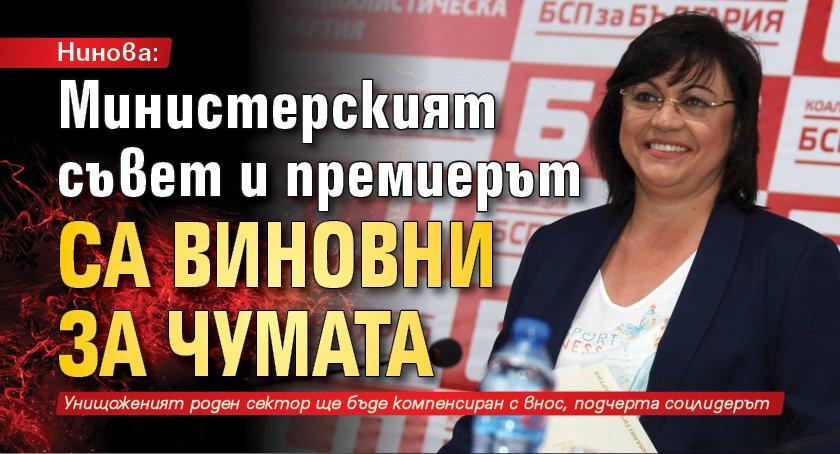 Нинова: Министерският съвет и премиерът са виновни за чумата