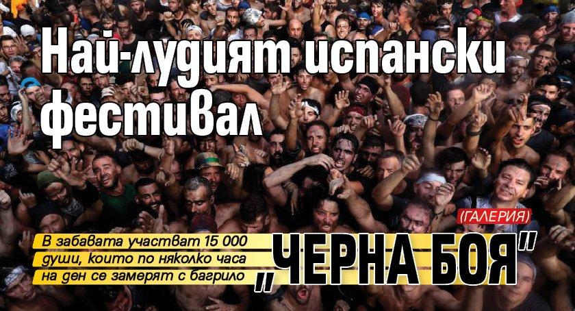 """Най-лудият испански фестивал """"Черна боя"""" (ГАЛЕРИЯ)"""