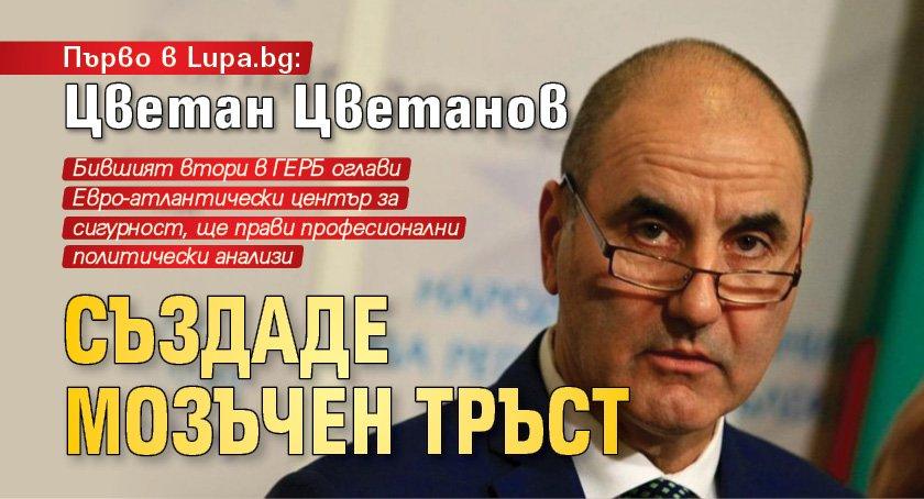 Първо в Lupa.bg: Цветан Цветанов създаде мозъчен тръст