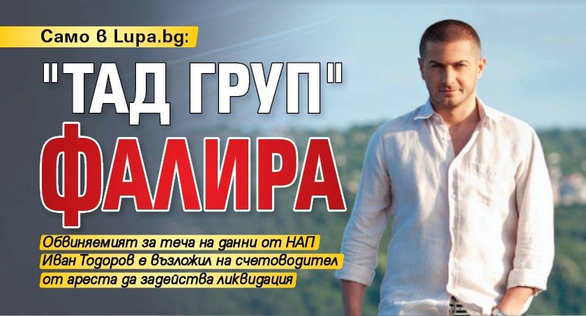 """Само в Lupa.bg: """"ТАД груп"""" фалира"""