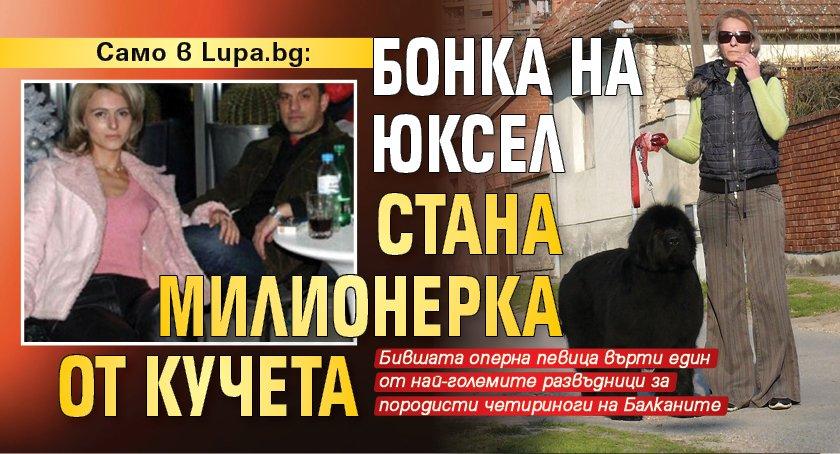 Само в Lupa.bg: Бонка на Юксел стана милионерка от кучета