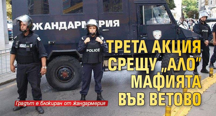 """Трета акция срещу """"ало"""" мафията във Ветово"""
