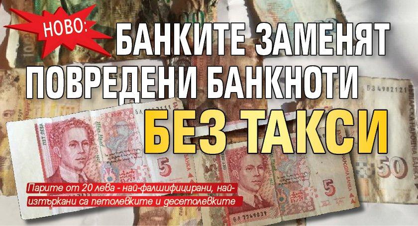Ново: Банките заменят повредени банкноти без такси