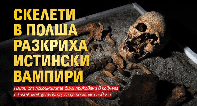 Скелети в Полша разкриха истински вампири
