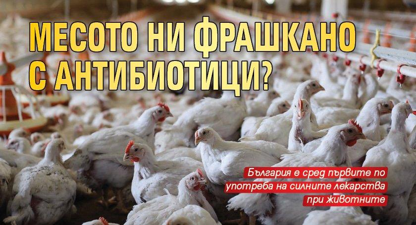 Месото ни фрашкано с антибиотици?