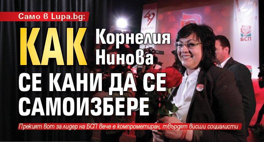 Само в Lupa.bg: Как Корнелия Нинова се кани да се самоизбере