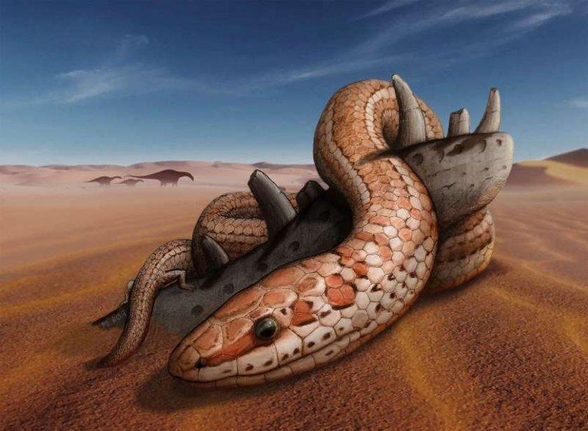 """Откриха Фосили от """"библейска"""" змия със задни крайници и огромна уста"""