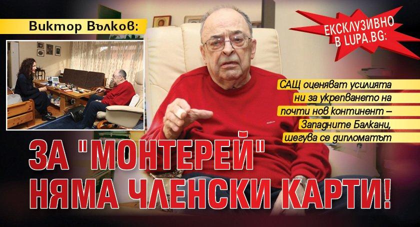 """Ексклузивно в Lupa.bg: Виктор Вълков: За """"Монтерей"""" няма членски карти!"""
