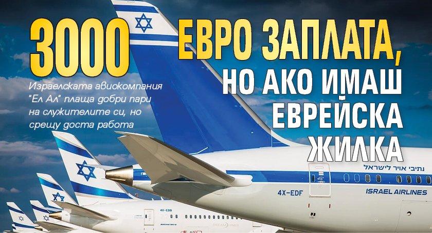 3000 евро заплата, но ако имаш еврейска жилка