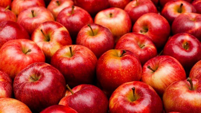 Червените ябълки изчезват от климатичните промени
