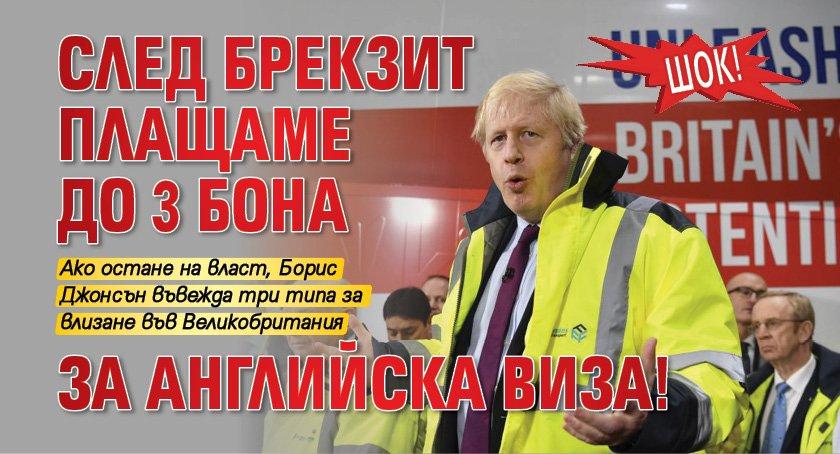 Шок! След Брекзит плащаме до 3 бона за английска виза!