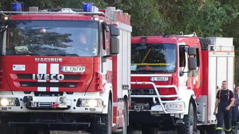 Жена подпали кръчма в Димитровград